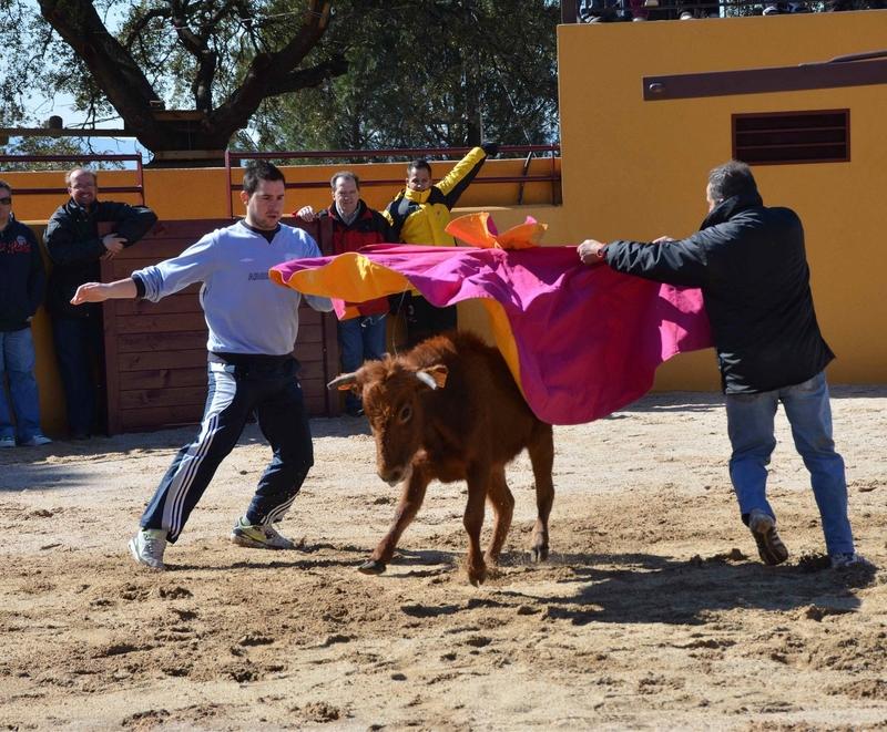 almoroxball-capeas-madrid-toledo-slider